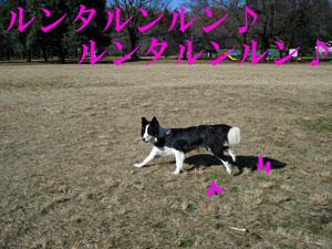 f0132070_2341213.jpg