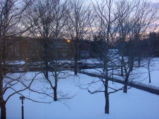 雪の当たり年?_e0101819_1335047.jpg