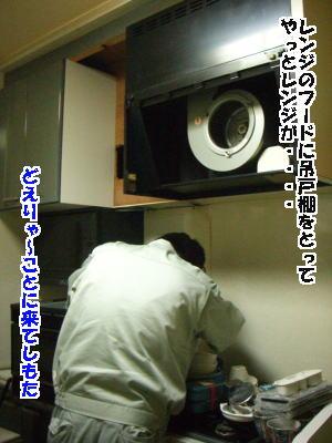 d0020869_253266.jpg