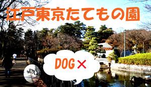f0132070_005632.jpg