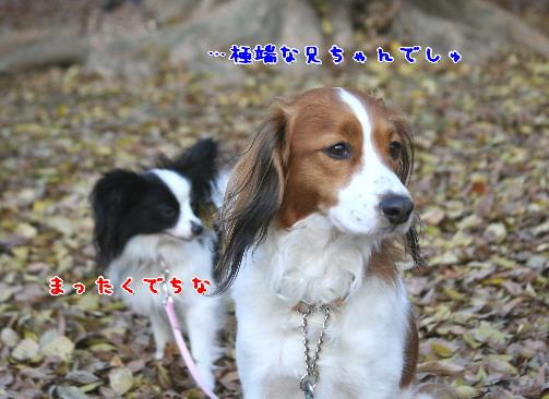 d0013149_2321221.jpg