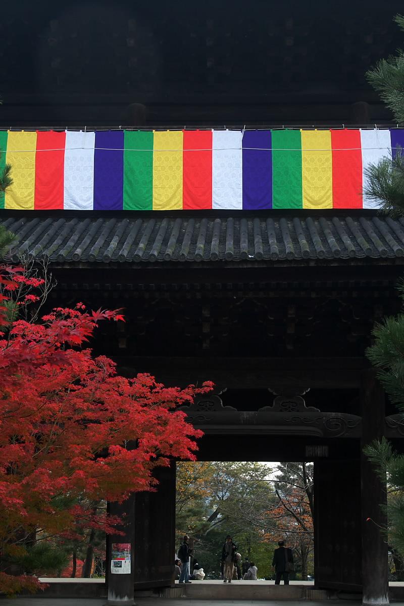 紅葉 2007 <真如堂 > 11_f0021869_22511467.jpg