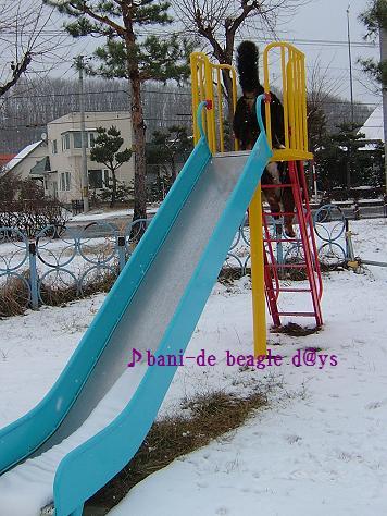 f0150377_1453128.jpg