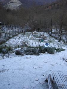 初雪が降りました_f0106597_0211327.jpg