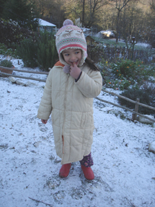 初雪が降りました_f0106597_0274936.jpg