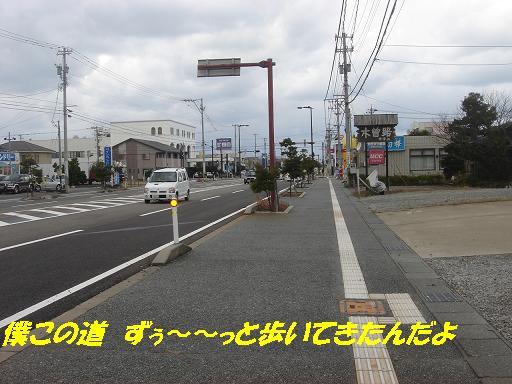 f0114128_1539435.jpg