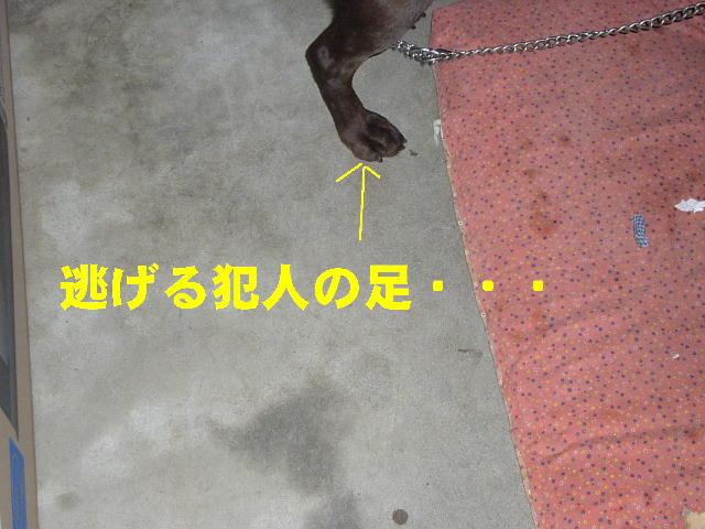 f0057565_1848741.jpg