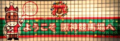 阪神競馬場           美しい馬に恍惚♪_c0009275_22254592.jpg