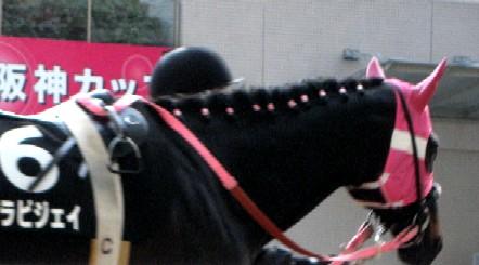 阪神競馬場           美しい馬に恍惚♪_c0009275_22272827.jpg