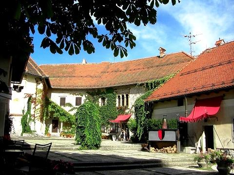 3日目(8/24):スロヴェニア アルプスの瞳「ブレッド湖」(3) ブレッド城_a0039199_20512850.jpg