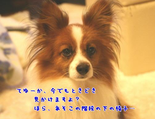 d0013149_015747.jpg