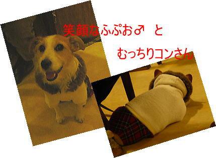 f0118263_1282857.jpg