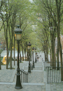 パリへお花を学ぶツアー VOL8 ~最終章~_b0111306_07262.jpg