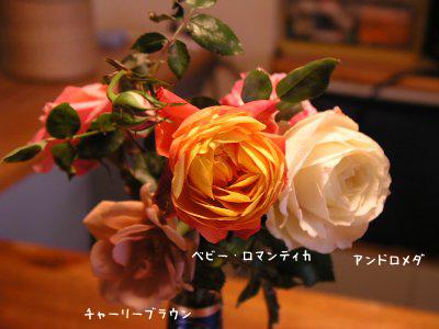b0031925_9382110.jpg