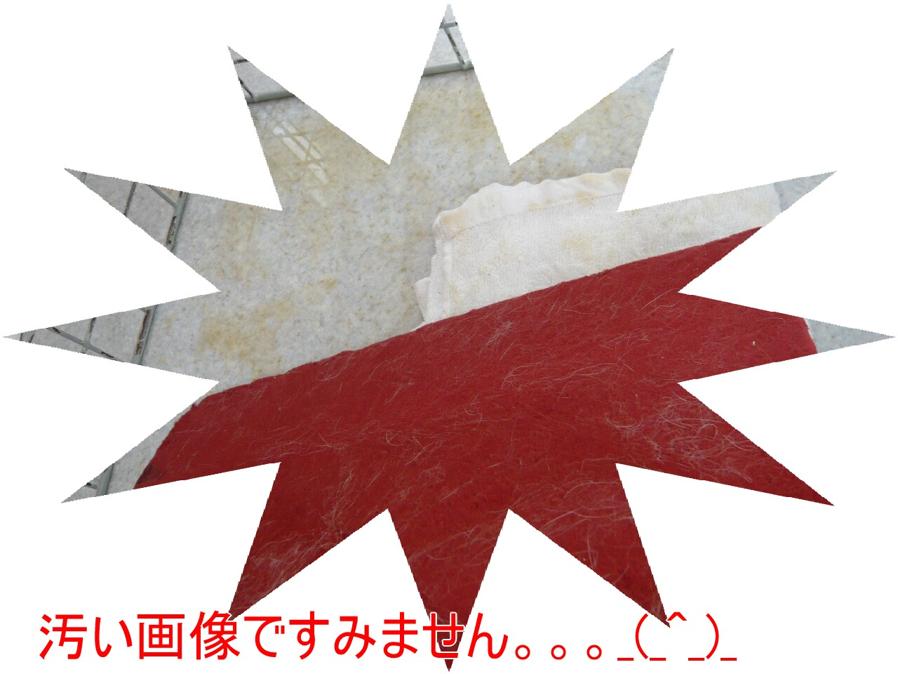 c0151439_9551955.jpg