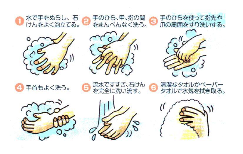 インフルエンザと風邪 その3_f0158691_16155818.jpg