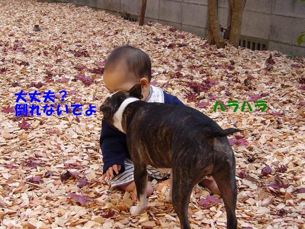 c0141900_2062282.jpg