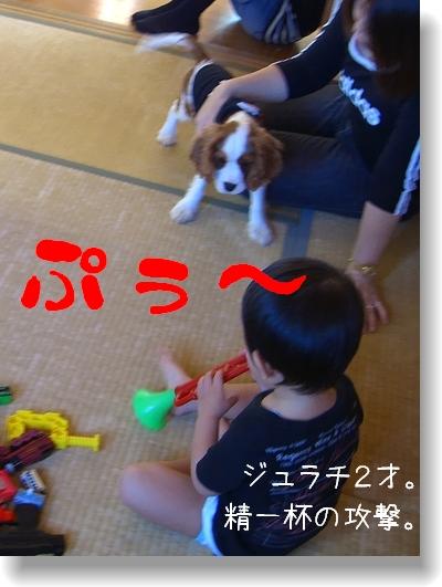 c0040201_256681.jpg