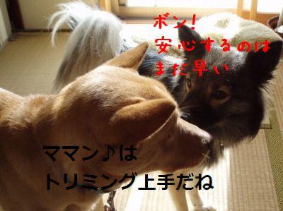 b0008709_1353448.jpg