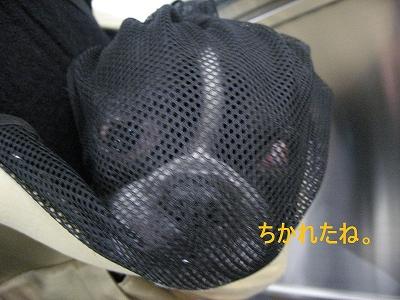 京都たび その③_f0141516_0301125.jpg
