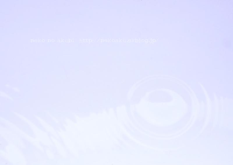 b0003512_18314158.jpg