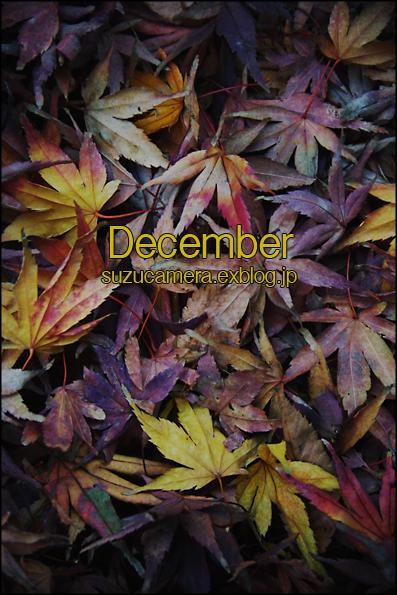 12月の誓い_f0100215_20581868.jpg