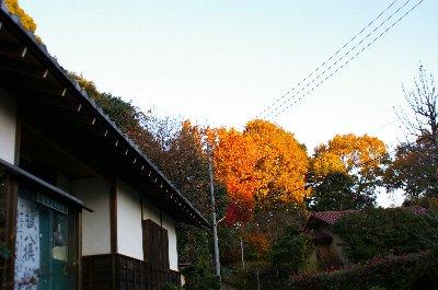 座禅 修廣寺にてNo1_c0038619_18325272.jpg