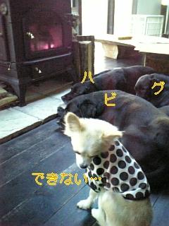 家訓_f0148927_1491097.jpg