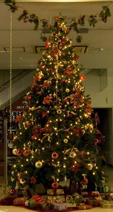 merry christmas!_d0129249_19455711.jpg