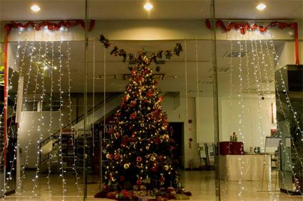merry christmas!_d0129249_205167.jpg