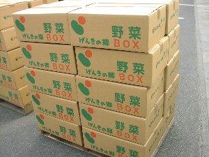 野菜BOX_c0141652_17291767.jpg
