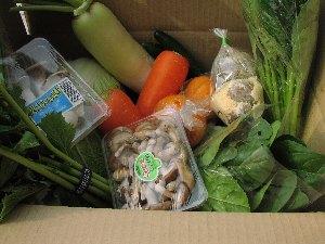 野菜BOX_c0141652_1729338.jpg