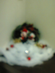 【brace西大寺店アシスタント岸本】初めての♪ブログ♪です∧∪∧ゞ_c0080367_18545747.jpg