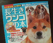 アトリエKotori広報部からのお知らせ_b0011075_15475112.jpg