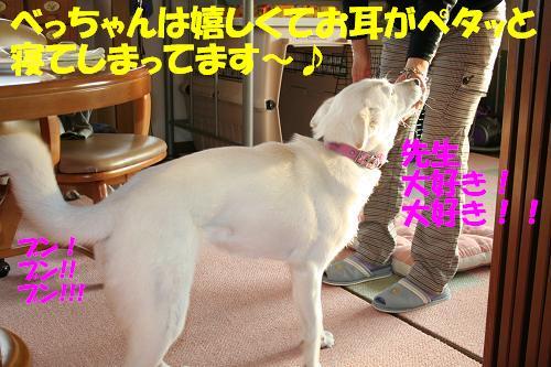 f0121712_1514077.jpg