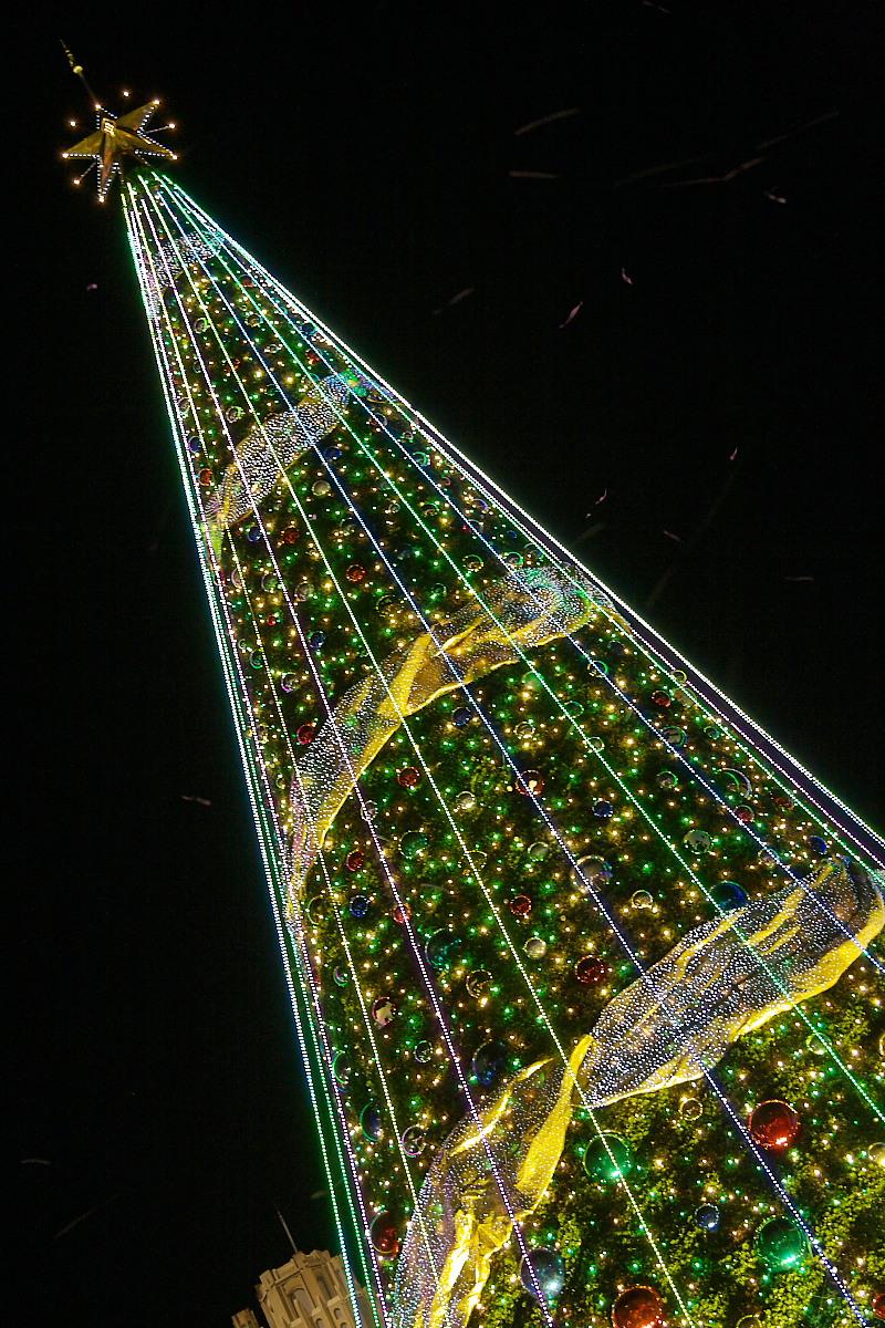 USJ ワンダークリスマス 2_f0021869_22444950.jpg