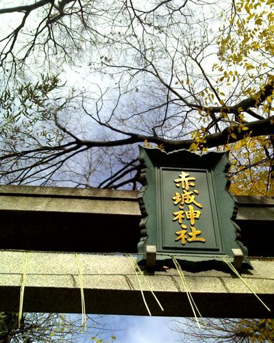 神楽坂 冬至_a0006744_1256985.jpg