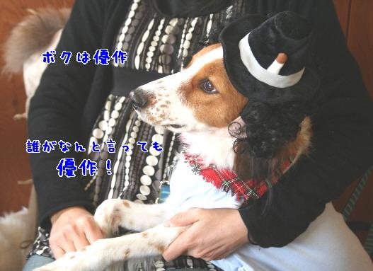 d0013149_16676.jpg