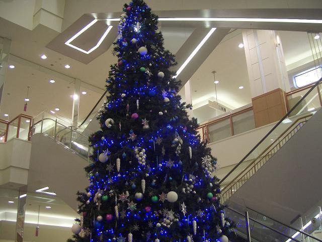 メリークリスマス!! 2007_c0118011_22135230.jpg