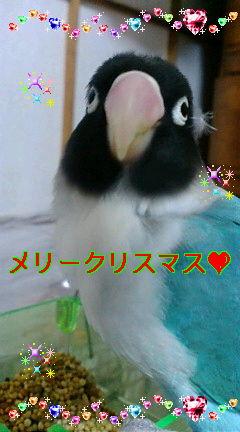 f0126418_206840.jpg