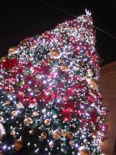 Merry Christmas 2007_e0064530_19473292.jpg