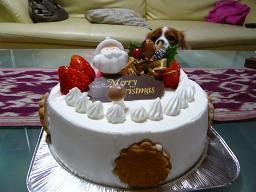 メリークリスマス!_d0100638_1624742.jpg