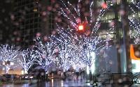十二月大歌舞伎_a0089450_13324677.jpg