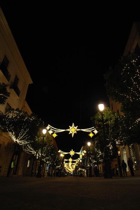 メリークリスマス_e0100152_11215852.jpg