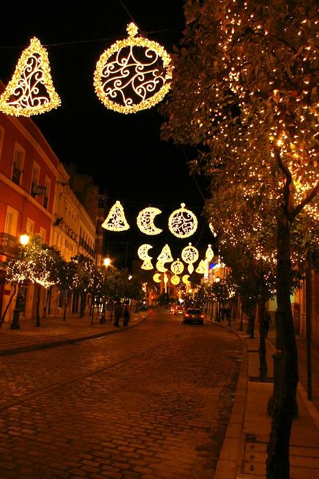 メリークリスマス_e0100152_1126971.jpg