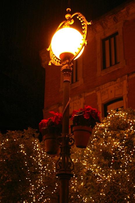 メリークリスマス_e0100152_112775.jpg