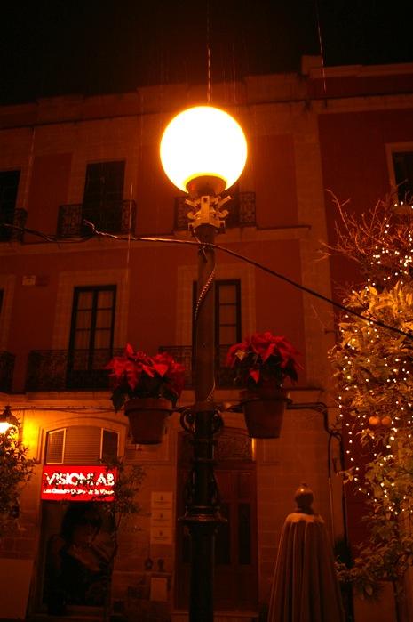 メリークリスマス_e0100152_11294011.jpg