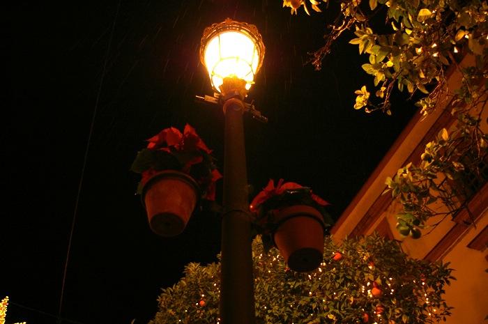 メリークリスマス_e0100152_11302443.jpg