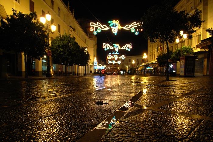 メリークリスマス_e0100152_1139140.jpg