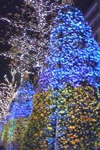 夜景♪_f0141960_1061620.jpg